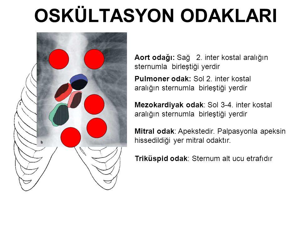 OSKÜLTASYON ODAKLARI Aort odağı: Sağ 2. inter kostal aralığın sternumla birleştiği yerdir Pulmoner odak: Sol 2. inter kostal aralığın sternumla birleş
