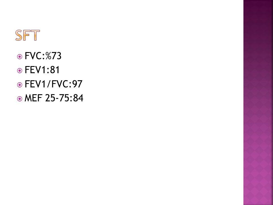  FVC:%73  FEV1:81  FEV1/FVC:97  MEF 25-75:84