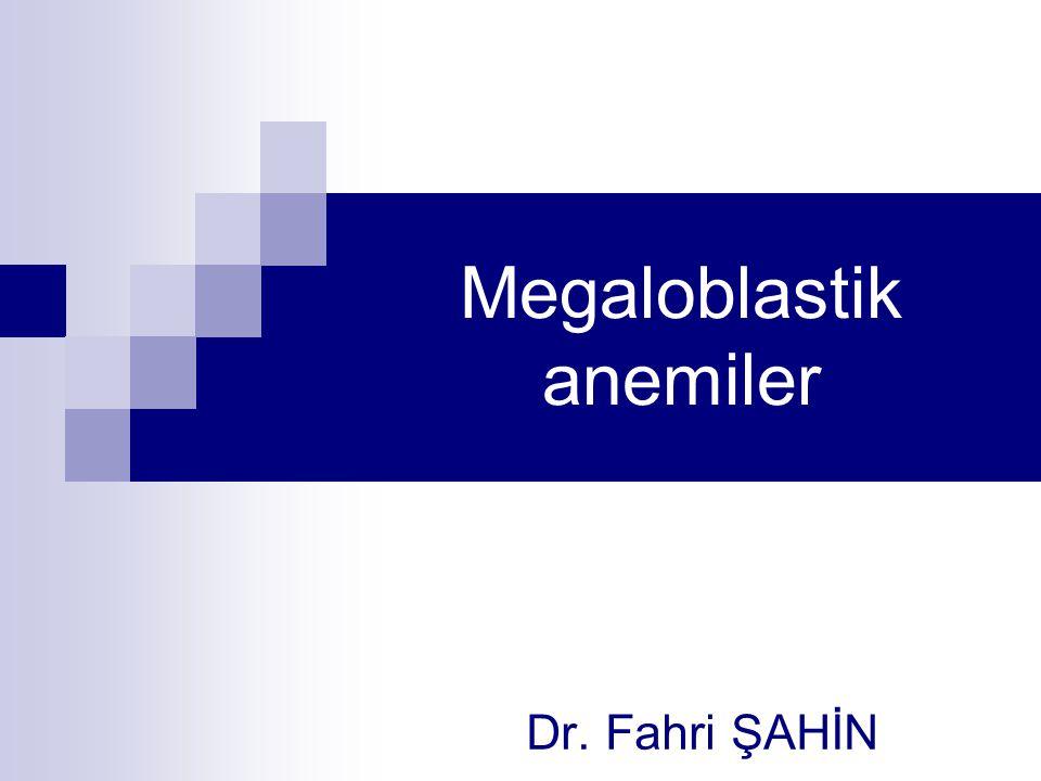 Megaloblastik anemiler Dr. Fahri ŞAHİN