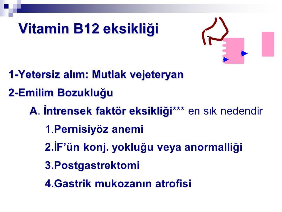 Vitamin B12 eksikliği Vitamin B12 eksikliği 1-Yetersiz alım: Mutlak vejeteryan 2-Emilim Bozukluğu İntrensek faktör eksikliği A. İntrensek faktör eksik