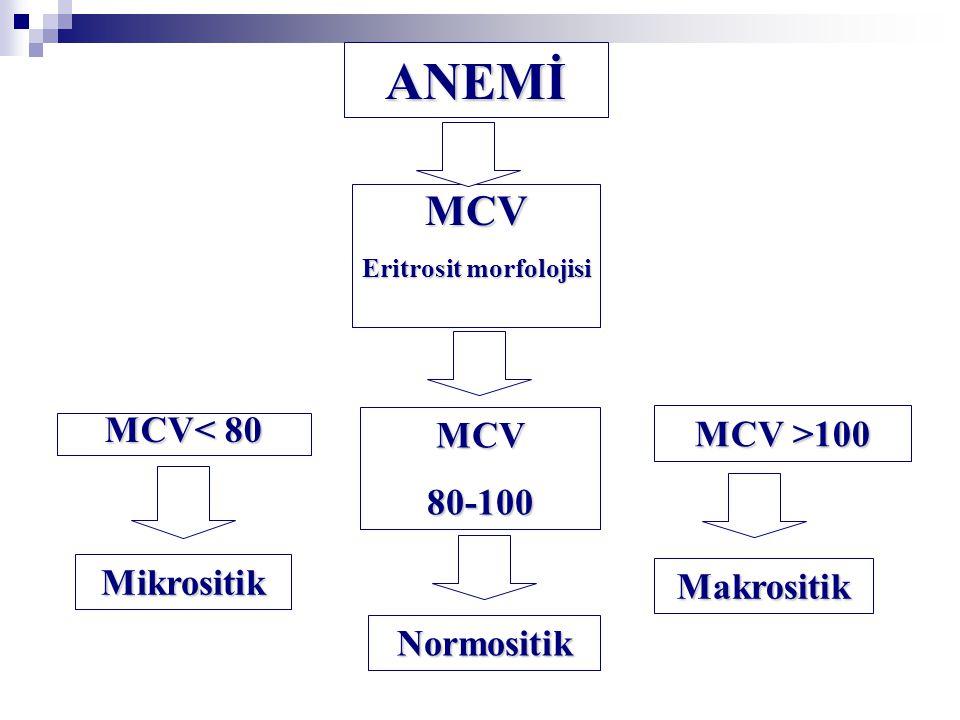 ANEMİ MCV Eritrosit morfolojisi MCV >100 MCV80-100 Makrositik MCV< 80 Normositik Mikrositik