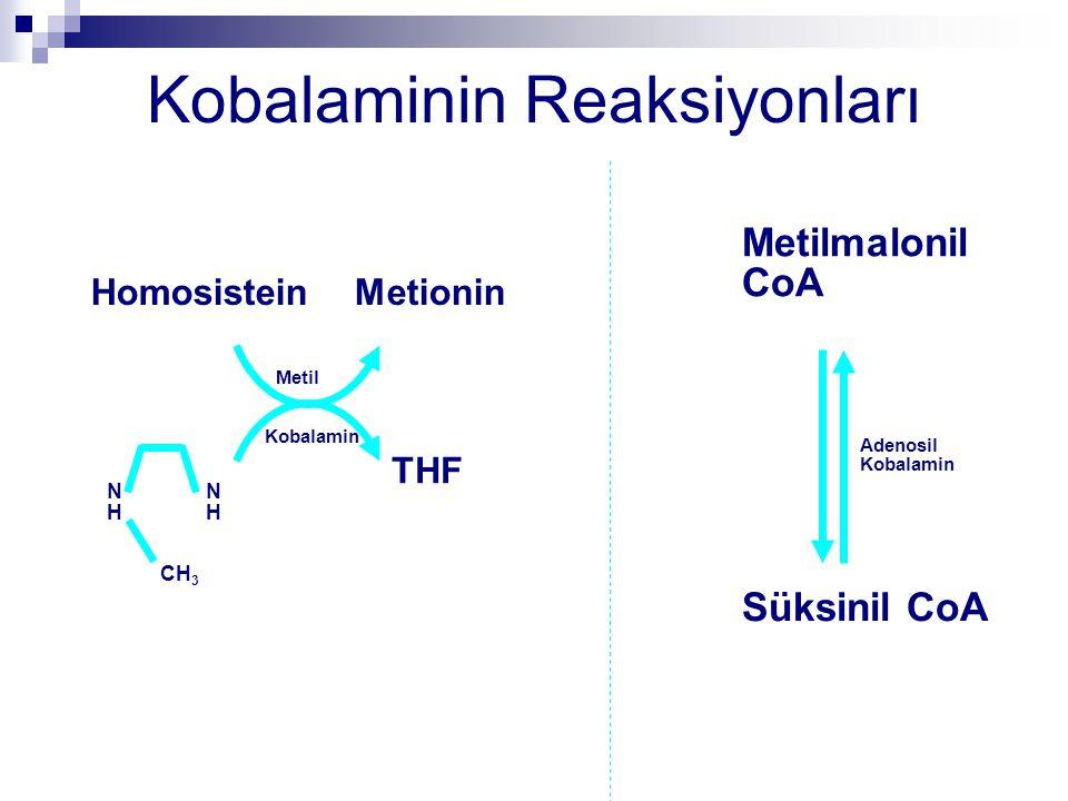Kobalaminin Reaksiyonları NHNH NHNH CH 3 THF HomosisteinMetionin Metil Kobalamin Metilmalonil CoA Süksinil CoA Adenosil Kobalamin
