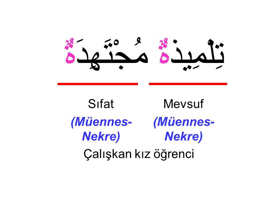 تِلْمِيذةٌ مُجْتَهِدَةٌ Çalışkan kız öğrenci Mevsuf (Müennes- Nekre) Sıfat (Müennes- Nekre) تِلْمِيذةٌ مُجْتَهِدَةٌ