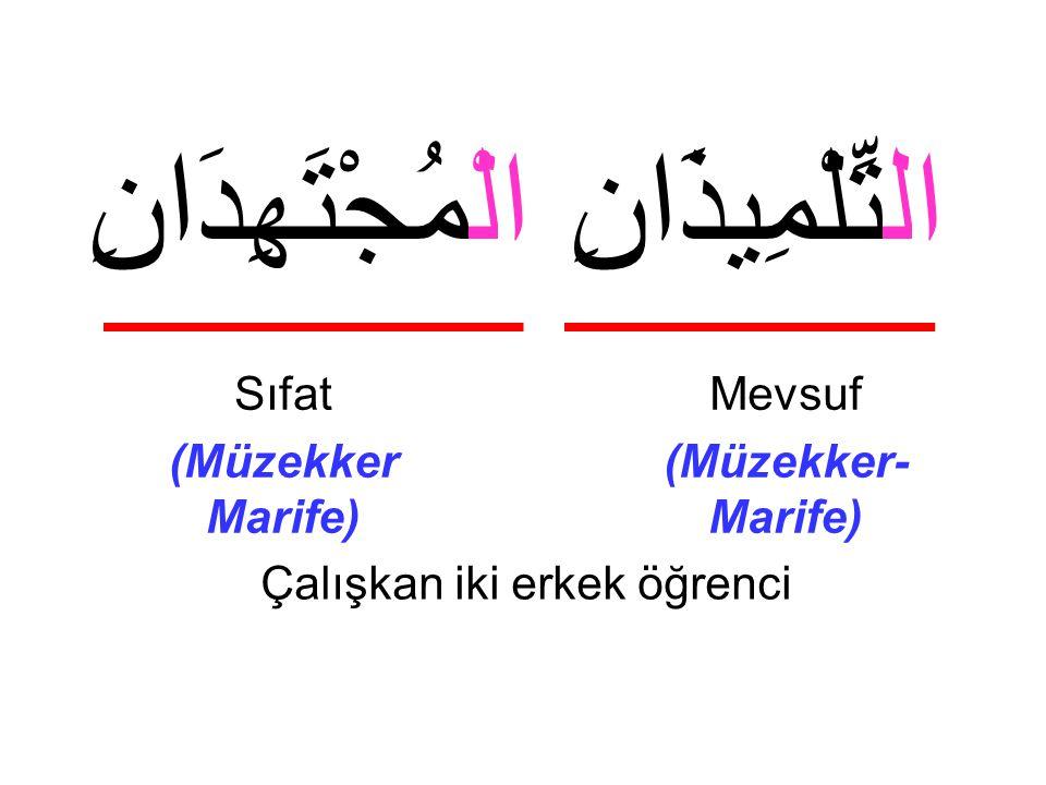 Çalışkan iki erkek öğrenci Mevsuf (Müzekker- Marife) Sıfat (Müzekker Marife) التِّلْمِيذَانِ الْمُجْتَهِدَانِ