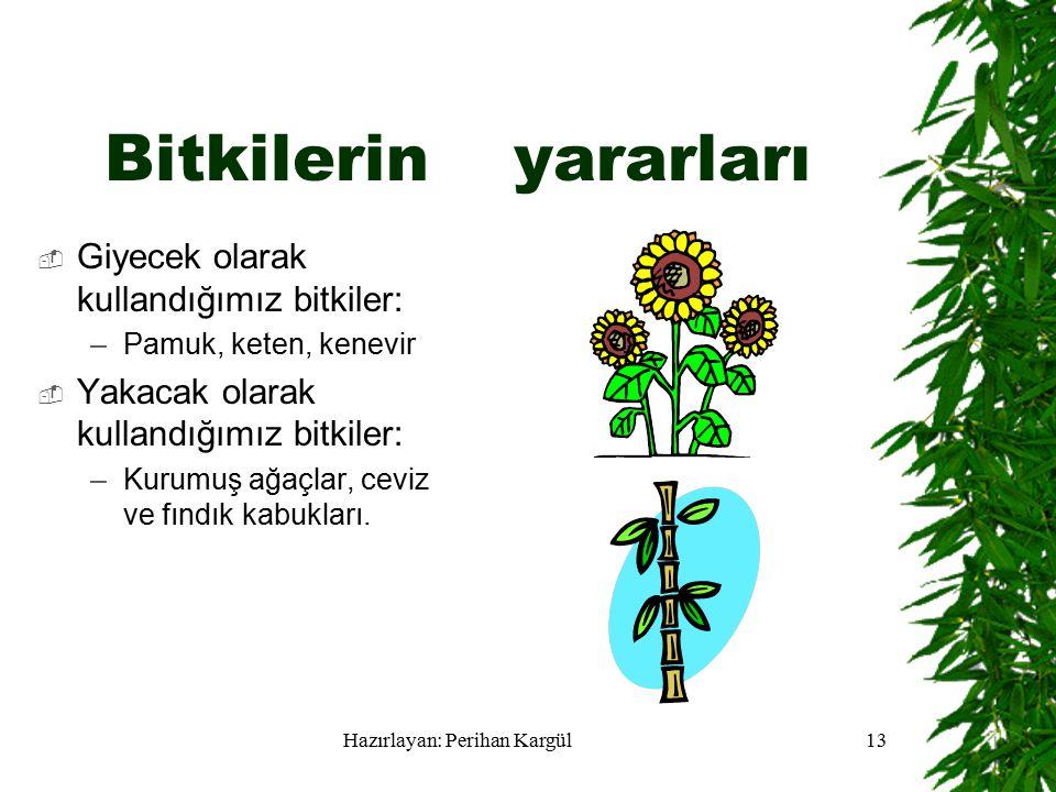 Hazırlayan: Perihan Kargül13 Bitkilerin yararları  Giyecek olarak kullandığımız bitkiler: –Pamuk, keten, kenevir  Yakacak olarak kullandığımız bitkiler: –Kurumuş ağaçlar, ceviz ve fındık kabukları.