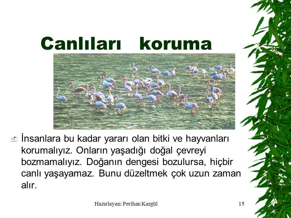 Hazırlayan: Perihan Kargül15 Canlıları koruma  İnsanlara bu kadar yararı olan bitki ve hayvanları korumalıyız.