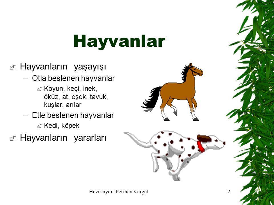 2 Hayvanlar  Hayvanların yaşayışı –Otla beslenen hayvanlar  Koyun, keçi, inek, öküz, at, eşek, tavuk, kuşlar, arılar –Etle beslenen hayvanlar  Kedi, köpek  Hayvanların yararları