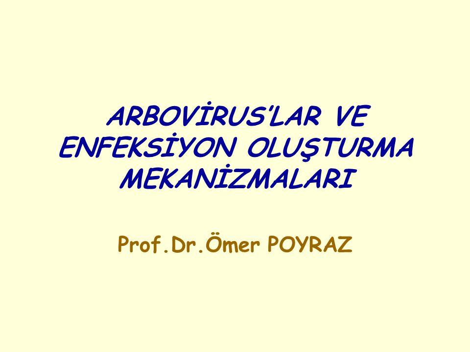 ARBOVİRUS'LAR VE ENFEKSİYON OLUŞTURMA MEKANİZMALARI Prof.Dr.Ömer POYRAZ