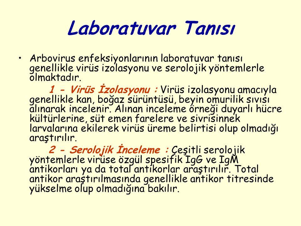 Laboratuvar Tanısı Arbovirus enfeksiyonlarının laboratuvar tanısı genellikle virüs izolasyonu ve serolojik yöntemlerle olmaktadır. 1 - Virüs İzolasyon