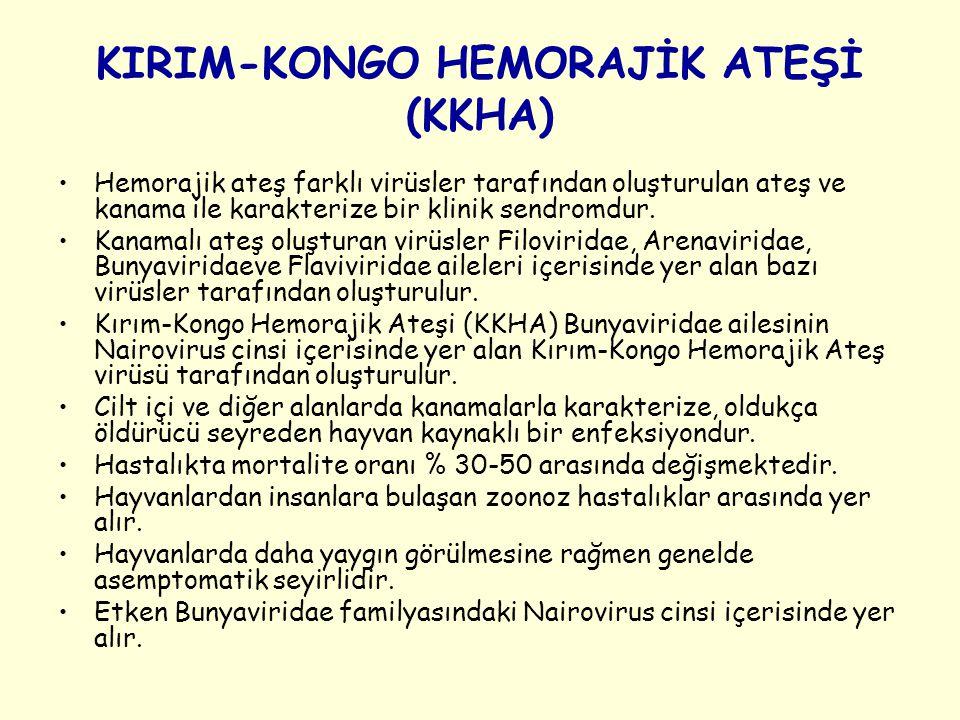 KIRIM-KONGO HEMORAJİK ATEŞİ (KKHA) Hemorajik ateş farklı virüsler tarafından oluşturulan ateş ve kanama ile karakterize bir klinik sendromdur. Kanamal