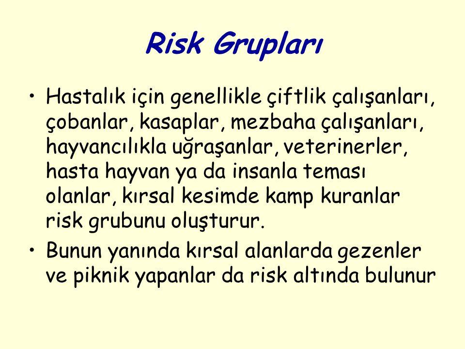 Risk Grupları Hastalık için genellikle çiftlik çalışanları, çobanlar, kasaplar, mezbaha çalışanları, hayvancılıkla uğraşanlar, veterinerler, hasta hay