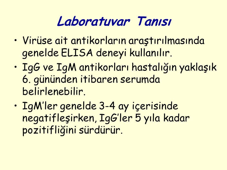 Laboratuvar Tanısı Virüse ait antikorların araştırılmasında genelde ELISA deneyi kullanılır. IgG ve IgM antikorları hastalığın yaklaşık 6. gününden it