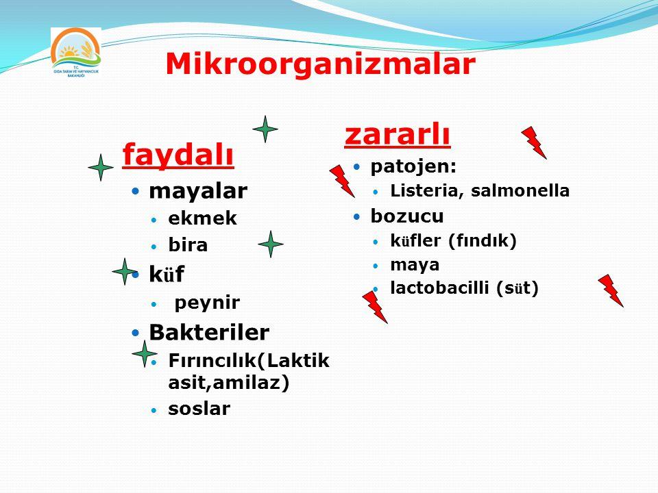 Mikroorganizmalar faydalı mayalar ekmek bira k ü f peynir Bakteriler Fırıncılık(Laktik asit,amilaz) soslar zararlı patojen: Listeria, salmonella bozuc