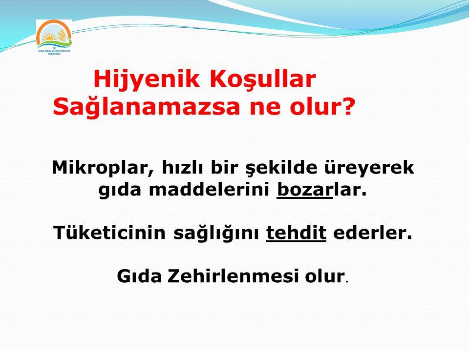 ELLERİNİZİ YIKAMADINIZ!
