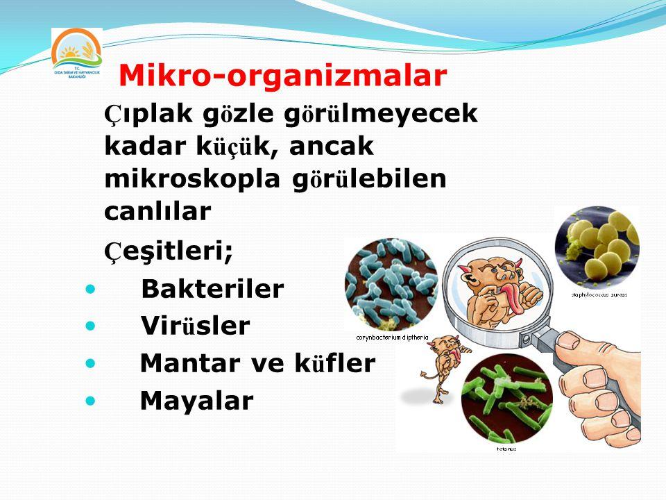 Mikro-organizmalar  Ç ıplak g ö zle g ö r ü lmeyecek kadar k üçü k, ancak mikroskopla g ö r ü lebilen canlılar  Ç eşitleri; Bakteriler Vir ü sler Ma