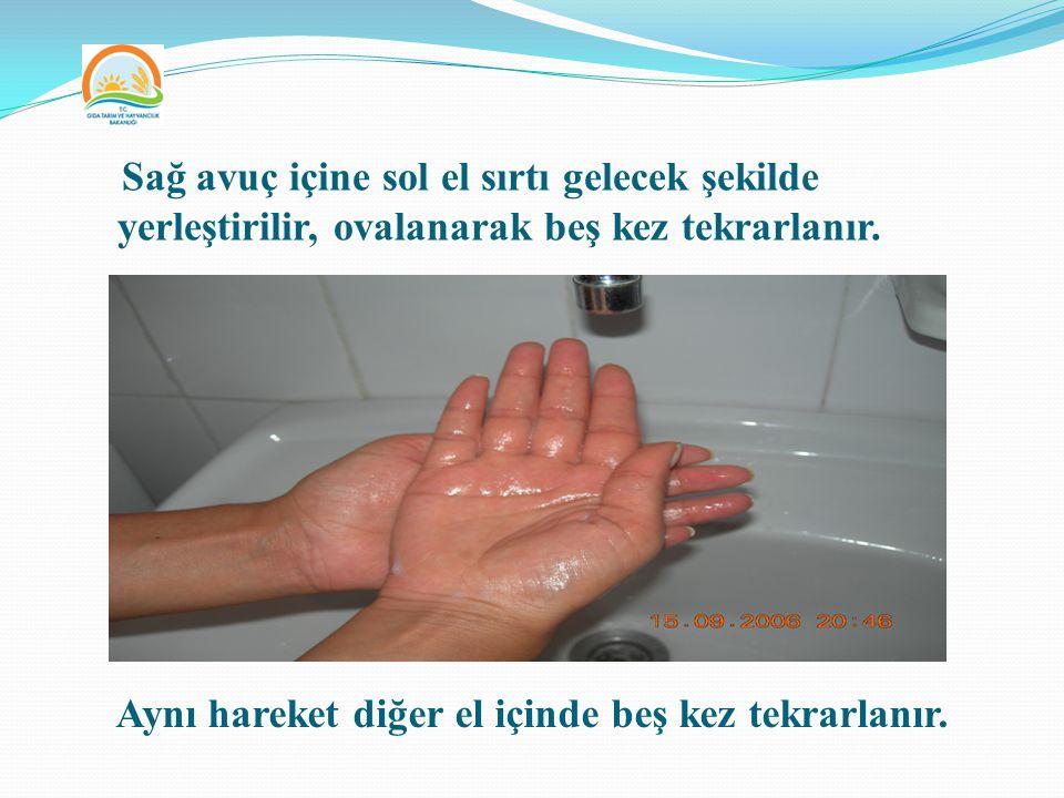 Sağ avuç içine sol el sırtı gelecek şekilde yerleştirilir, ovalanarak beş kez tekrarlanır. Aynı hareket diğer el içinde beş kez tekrarlanır.
