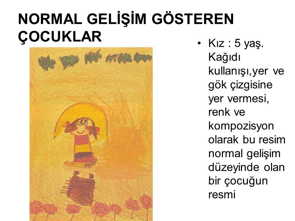 NORMAL GELİŞİM GÖSTEREN ÇOCUKLAR Kız : 5 yaş. Kağıdı kullanışı,yer ve gök çizgisine yer vermesi, renk ve kompozisyon olarak bu resim normal gelişim dü
