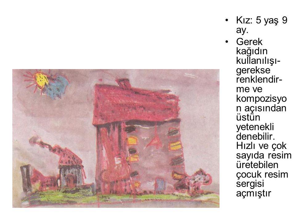 Kız: 5 yaş 9 ay. Gerek kağıdın kullanılışı- gerekse renklendir- me ve kompozisyo n açısından üstün yetenekli denebilir. Hızlı ve çok sayıda resim üret