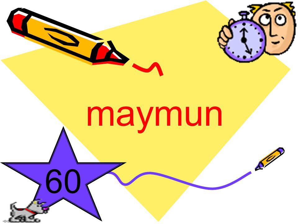 maymun 60