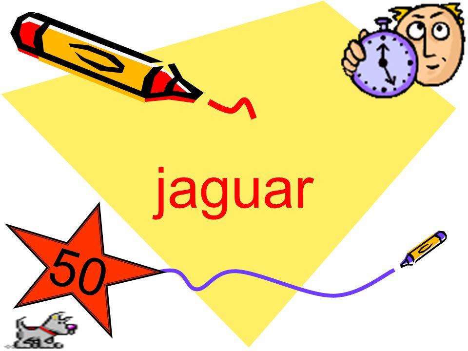 jaguar 5 0