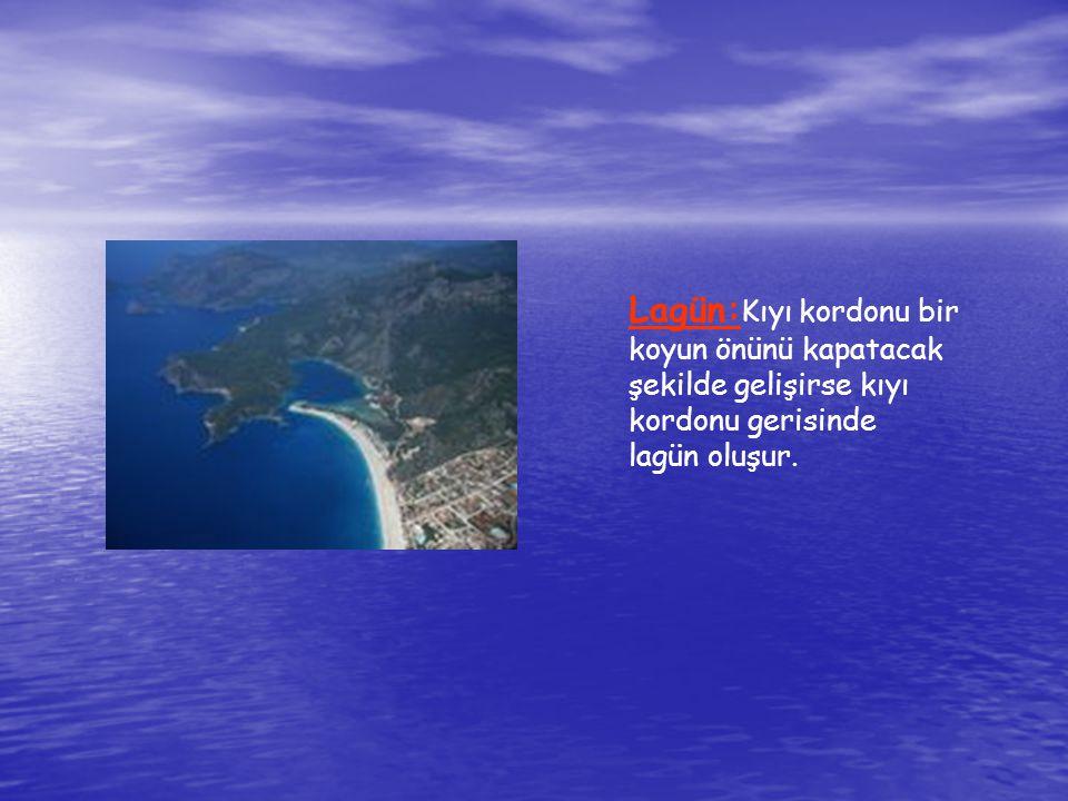 Lagün: Kıyı kordonu bir koyun önünü kapatacak şekilde gelişirse kıyı kordonu gerisinde lagün oluşur.