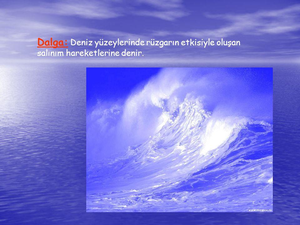 Dalga: Deniz yüzeylerinde rüzgarın etkisiyle oluşan salınım hareketlerine denir.