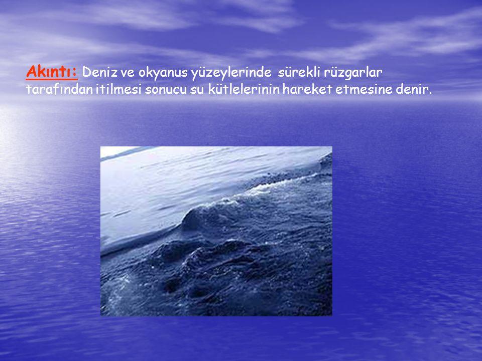 Okyanus: Kıtaları birbirinden ayıran geniş su kütlelerine okyanus denir.