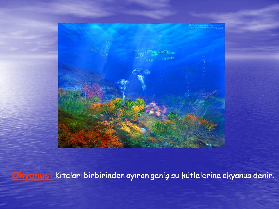 Deniz: Okyanusların kıta içlerine doğru uzanan kollarına deniz denir.