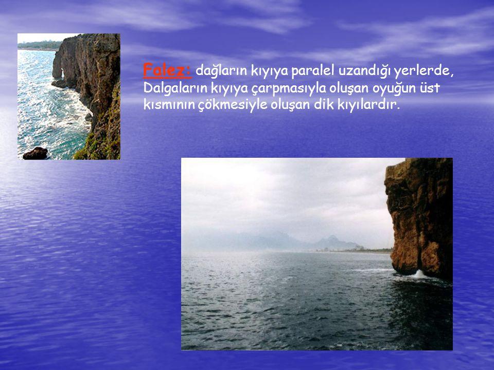 Haliç: Gel gitin etkili olduğu okyanusun kıyılarında, suların çekilmesi akarsuyun ağzını genişletir ve akarsuyun ağzına doğru girinti yapar.