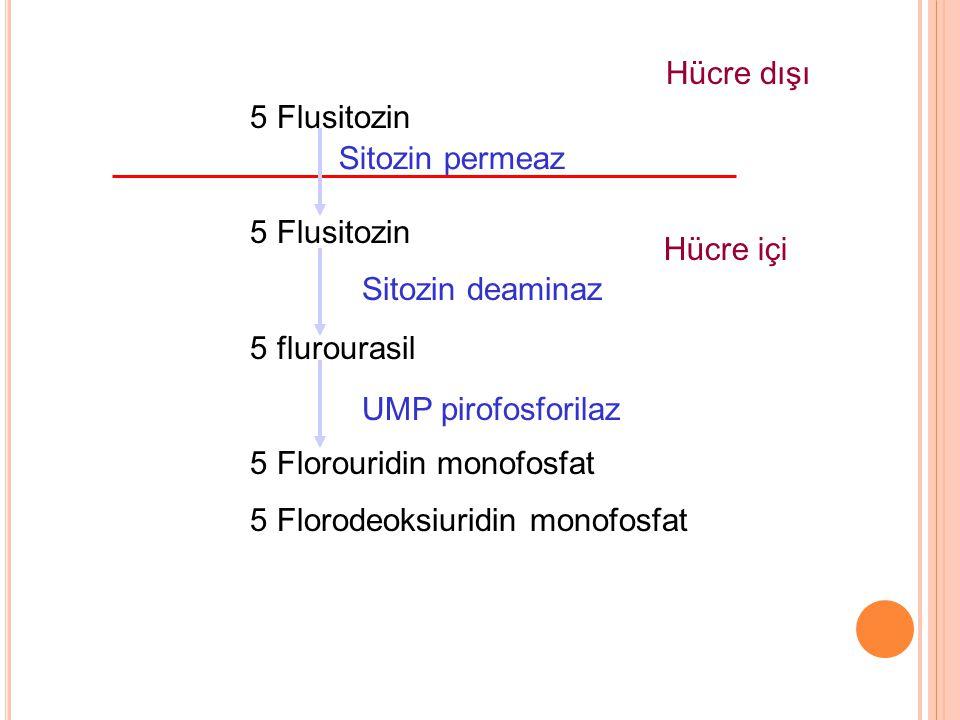 5 Flusitozin 5 flurourasil 5 Florouridin monofosfat 5 Florodeoksiuridin monofosfat Sitozin permeaz Sitozin deaminaz UMP pirofosforilaz Hücre dışı Hücr
