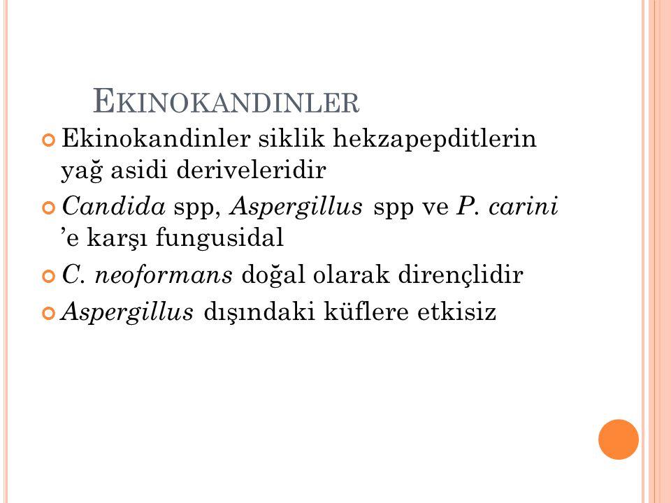 E KINOKANDINLER Ekinokandinler siklik hekzapepditlerin yağ asidi deriveleridir Candida spp, Aspergillus spp ve P. carini 'e karşı fungusidal C. neofor