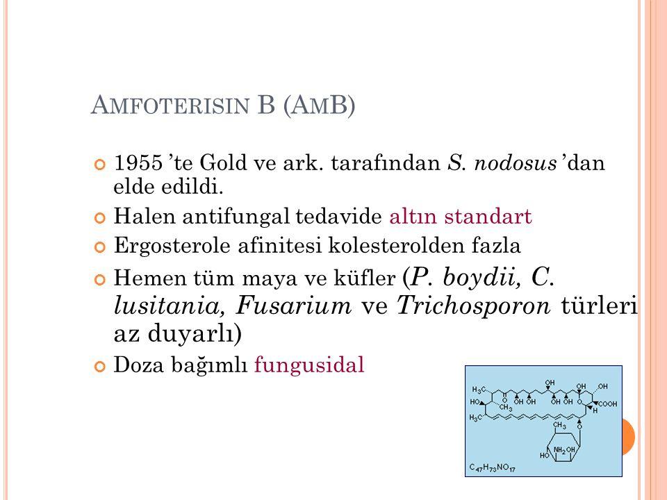 A MFOTERISIN B (A M B) 1955 'te Gold ve ark. tarafından S. nodosus 'dan elde edildi. Halen antifungal tedavide altın standart Ergosterole afinitesi ko