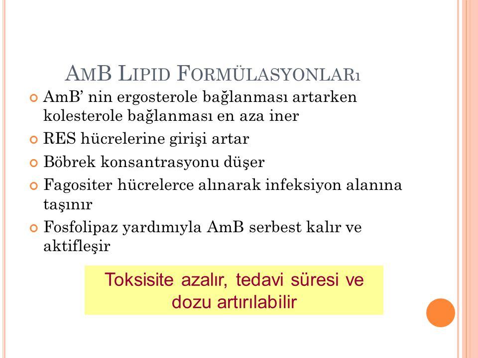 A M B VE L IPID F ORMÜLASYONLARı 1995 - AmB lipid kompleks, ABLC, (Abelcet) R 1996 - AmB kolloidal dispersiyon, ABCD, (Amphocil) R 1997 - Lipozomal AmB, L-AMB, (AmBisome) R