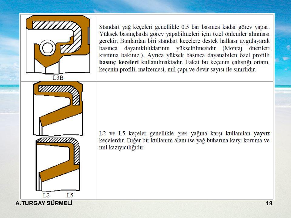 A.TURGAY SÜRMELİ 19