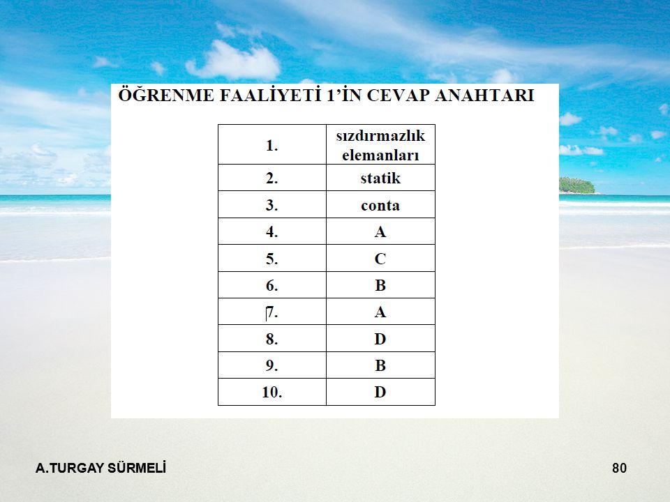 A.TURGAY SÜRMELİ 80