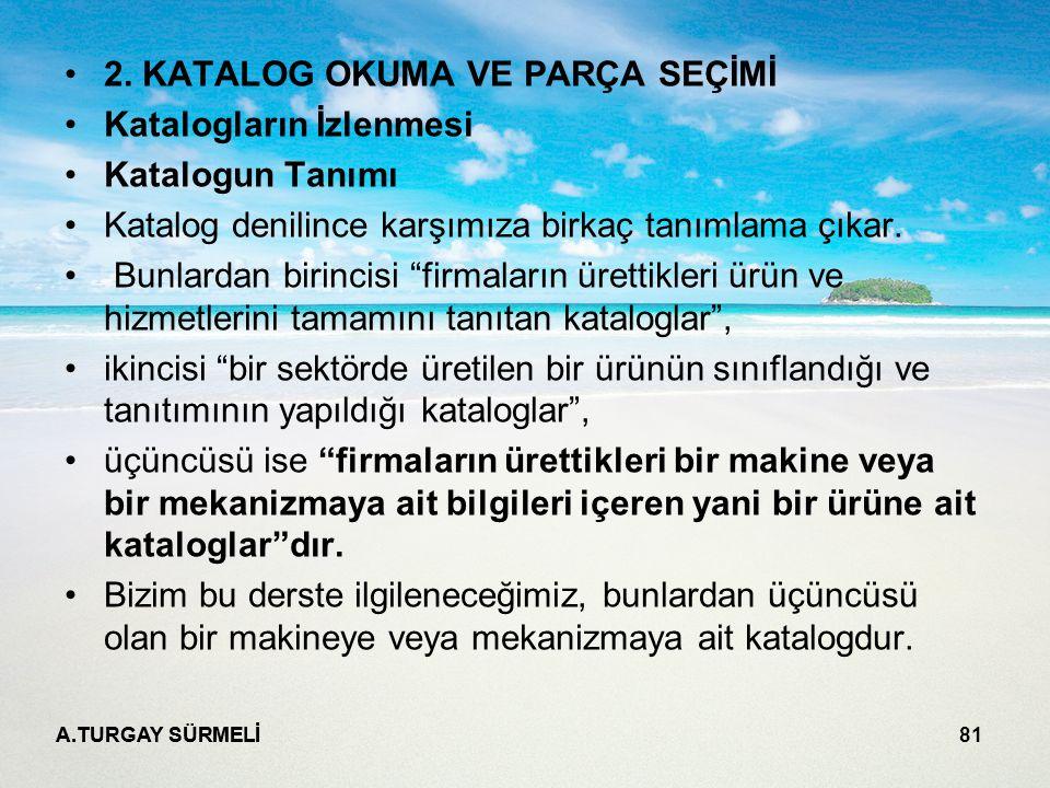 A.TURGAY SÜRMELİ 81 2.