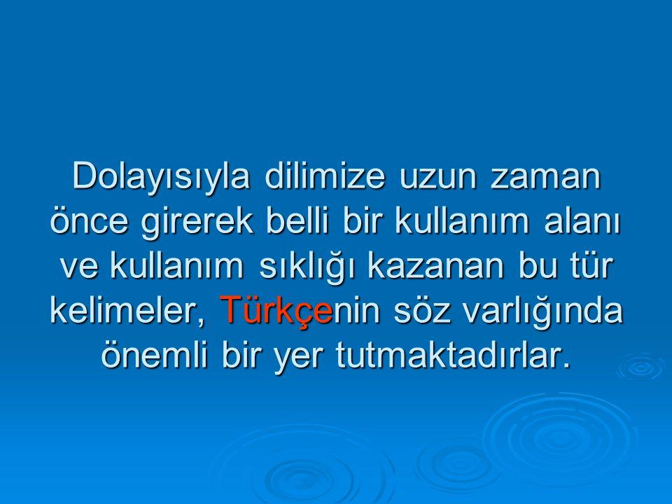 Dolayısıyla dilimize uzun zaman önce girerek belli bir kullanım alanı ve kullanım sıklığı kazanan bu tür kelimeler, Türkçenin söz varlığında önemli bir yer tutmaktadırlar.