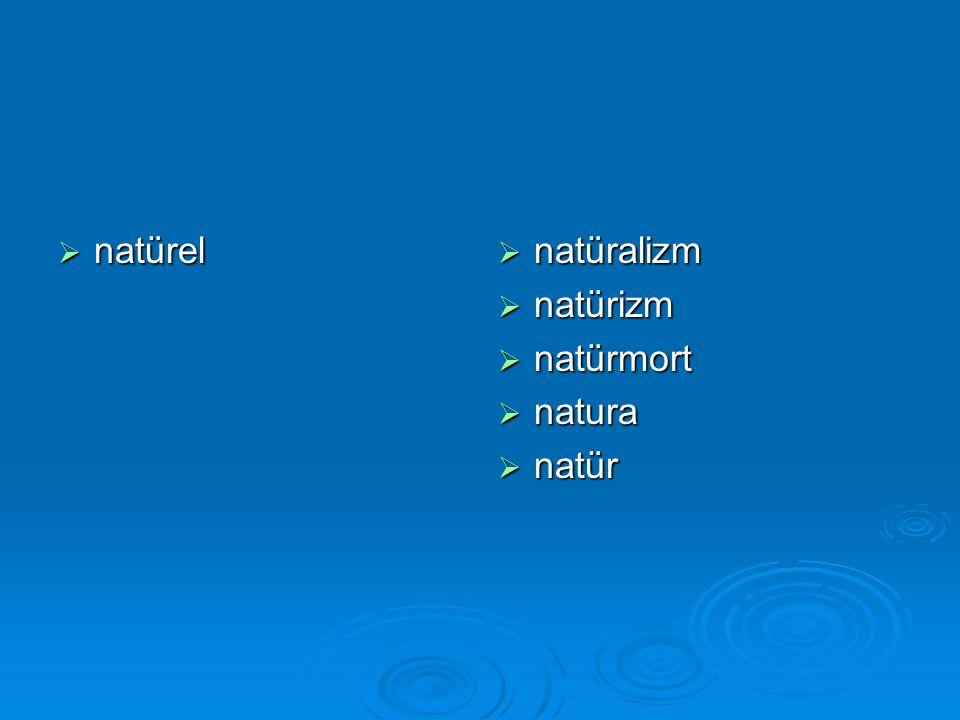  natürel  natüralizm  natürizm  natürmort  natura  natür