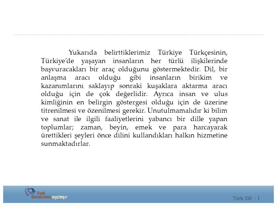 Yukarıda belirttiklerimiz Türkiye Türkçesinin, Türkiye'de yaşayan insanların her türlü ilişkilerinde başvuracakları bir araç olduğunu göstermektedir.