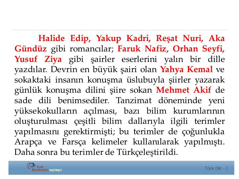 Halide Edip, Yakup Kadri, Reşat Nuri, Aka Gündüz gibi romancılar; Faruk Nafiz, Orhan Seyfi, Yusuf Ziya gibi şairler eserlerini yalın bir dille yazdılar.