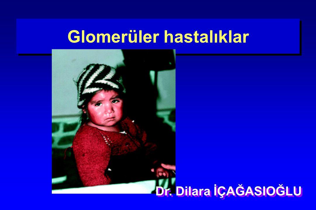 Glomerüler hastalıklar Dr. Dilara İÇAĞASIOĞLU
