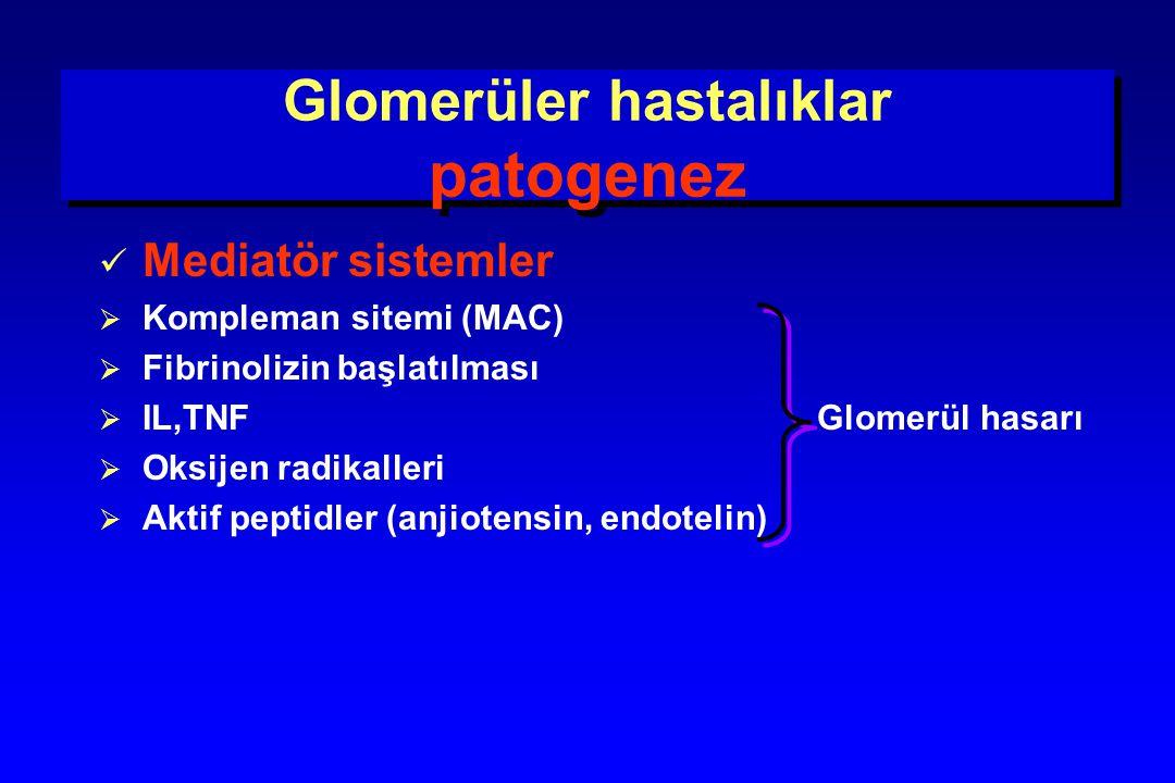 Glomerüler hastalıklar patogenez Mediatör sistemler  Kompleman sitemi (MAC)  Fibrinolizin başlatılması  IL,TNF Glomerül hasarı  Oksijen radikaller