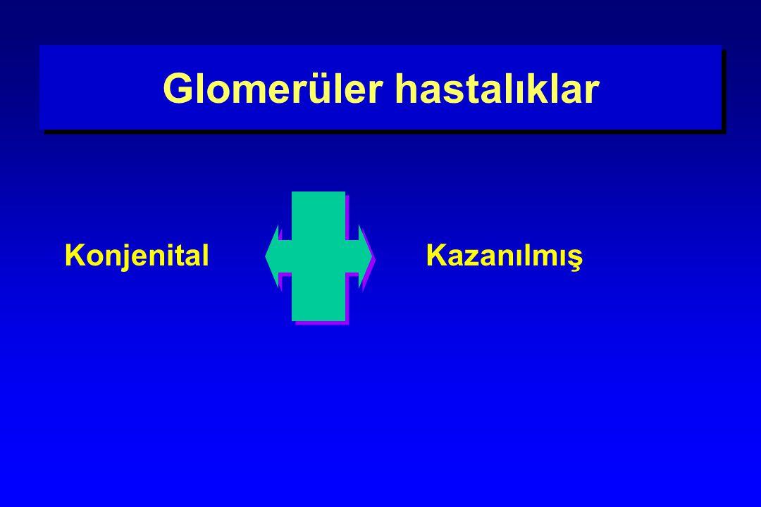 Glomerüler hastalıklar Konjenital Kazanılmış