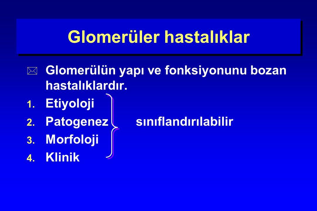 Glomerüler hastalıklar 4.Klinik Akut glomerülonefrit (akut nefritik sendrom,AGN) Hızlı ilerleyen glomerülonefrit (Rapidly progressive glomerulonephritis, RPGN) Nefrotik sendrom (NS) Asemptomatik idrar analiz anormallikleri (hematüri ve/veya proteinüri)