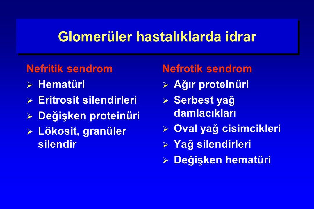 Glomerüler hastalıklarda idrar Nefritik sendrom  Hematüri  Eritrosit silendirleri  Değişken proteinüri  Lökosit, granüler silendir Nefrotik sendro