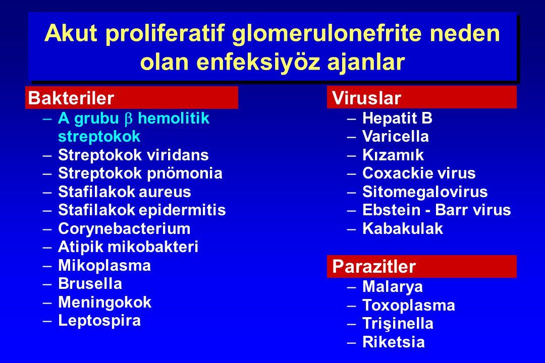 Akut proliferatif glomerulonefrite neden olan enfeksiyöz ajanlar Bakteriler –A grubu  hemolitik streptokok –Streptokok viridans –Streptokok pnömonia