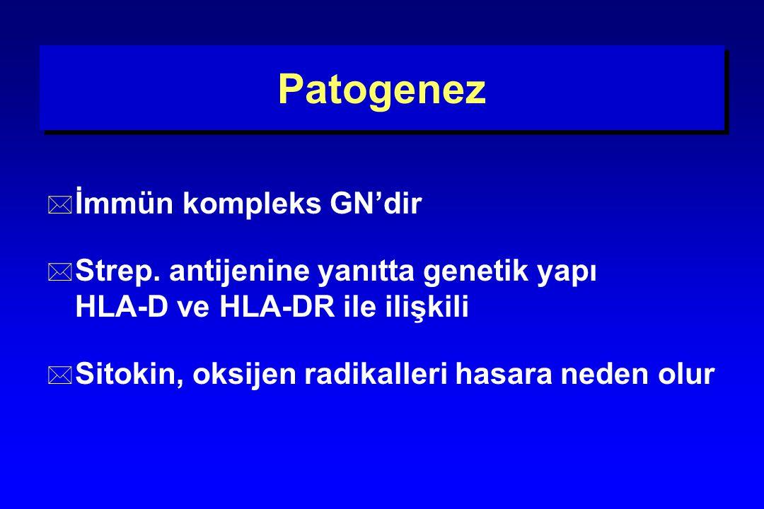 Patogenez * İmmün kompleks GN'dir * Strep. antijenine yanıtta genetik yapı HLA-D ve HLA-DR ile ilişkili * Sitokin, oksijen radikalleri hasara neden ol