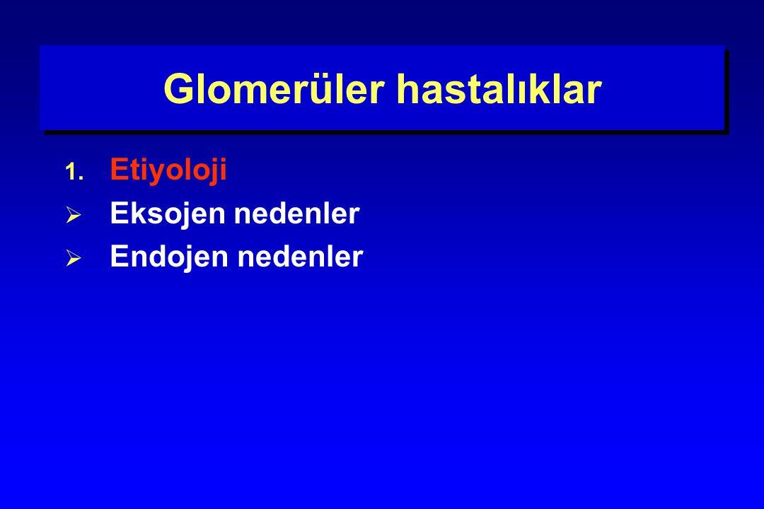 Akut proliferatif glomerulonefrite neden olan enfeksiyöz ajanlar Bakteriler –A grubu  hemolitik streptokok –Streptokok viridans –Streptokok pnömonia –Stafilakok aureus –Stafilakok epidermitis –Corynebacterium –Atipik mikobakteri –Mikoplasma –Brusella –Meningokok –Leptospira Viruslar –Hepatit B –Varicella –Kızamık –Coxackie virus –Sitomegalovirus –Ebstein - Barr virus –Kabakulak Parazitler –Malarya –Toxoplasma –Trişinella –Riketsia