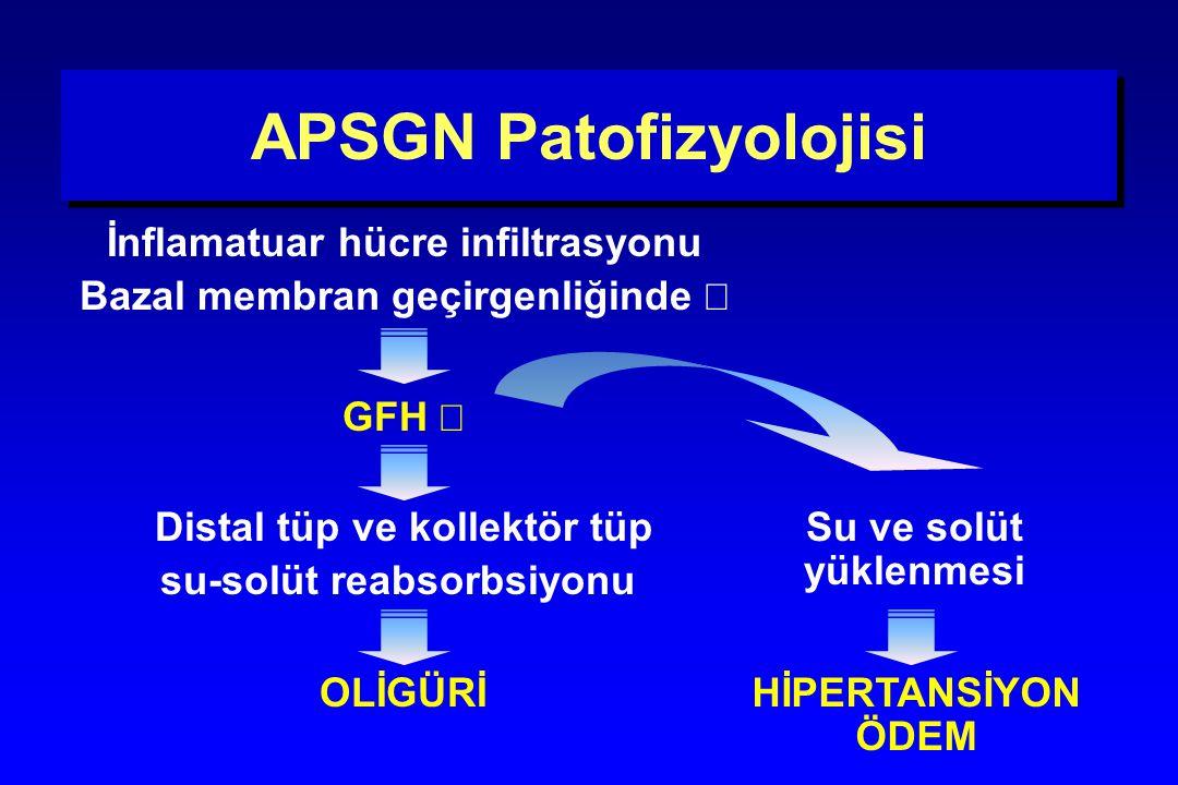 APSGN Patofizyolojisi İnflamatuar hücre infiltrasyonu Bazal membran geçirgenliğinde  GFH  OLİGÜRİ Distal tüp ve kollektör tüp su-solüt reabsorbsiyon