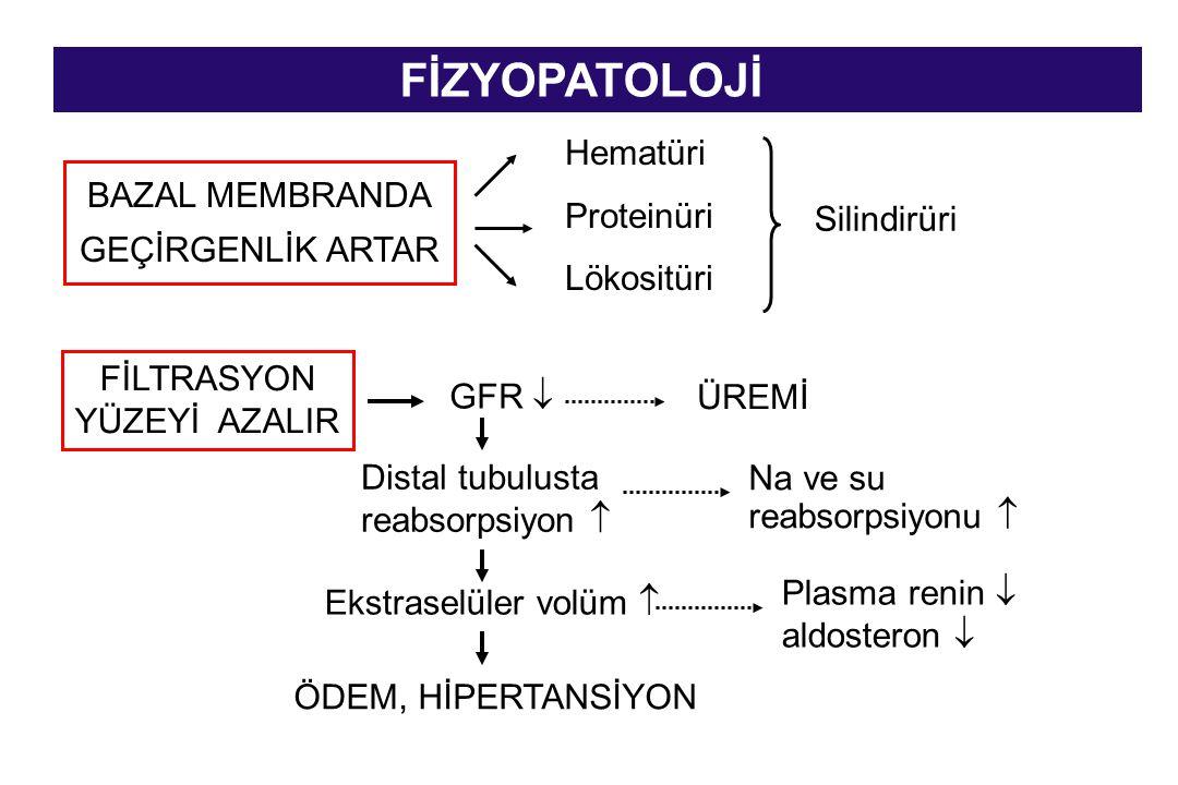 FİZYOPATOLOJİ BAZAL MEMBRANDA GEÇİRGENLİK ARTAR FİLTRASYON YÜZEYİ AZALIR Hematüri Proteinüri Lökositüri Silindirüri GFR  ÜREMİ Distal tubulusta reabs